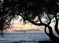 thank-you_gratitude_maui